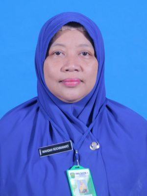 Wahdah Rochmawati, M. Pd